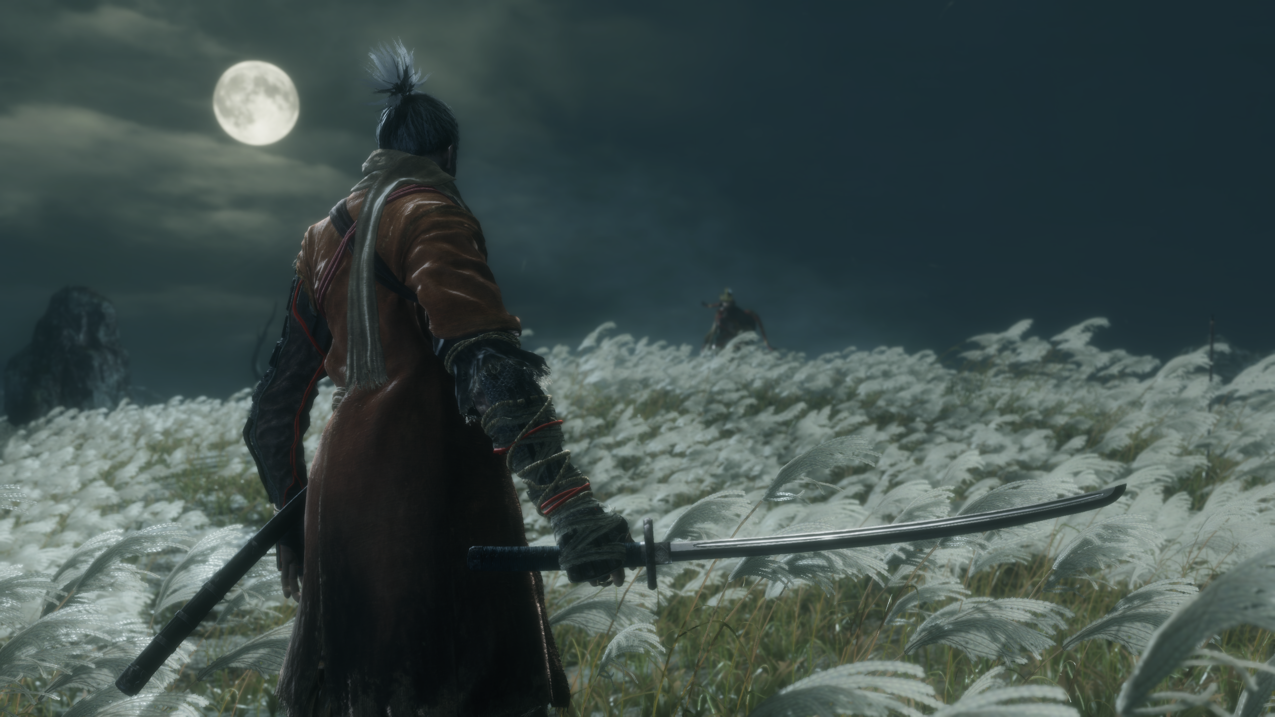 IMAGE(http://www.shadout.dk/games/andre/sekiro1.png)